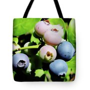 Florida - Blueberries - On The Bush Tote Bag