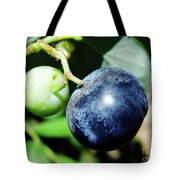 Florida - Blueberry Tote Bag