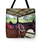 Florida Cracker Horse Tote Bag