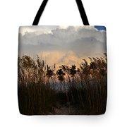 Florida Dunes Tote Bag