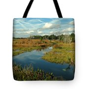 Florida Fall Tote Bag