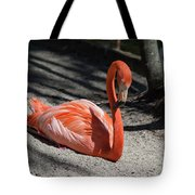 Florida Flamingo Tote Bag