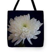 Florida Flowers - White Gerbera Ready For Full Bloom Tote Bag