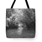 Florida Garden Scene_011 Tote Bag