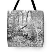Florida Garden Scene_012 Tote Bag