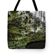 Florida Grotto Tote Bag