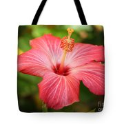 Florida Hibiscus Tote Bag