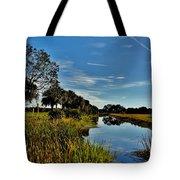 Florida Lands 7 Tote Bag