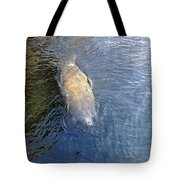 Florida Manatee Tote Bag