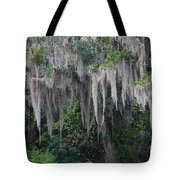 Florida Mossy Tree Tote Bag