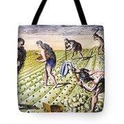 Florida Natives, 1591 Tote Bag