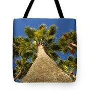 Florida Palms Tote Bag