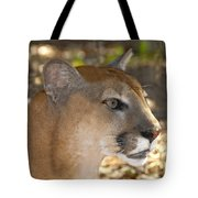 Florida Panther Tote Bag