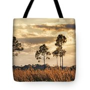 Florida Pine Landscape By H H Photography Of Florida Tote Bag