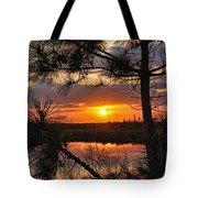Florida Pine Sunset Tote Bag