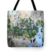 Florida Pond Tote Bag