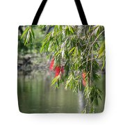 Florida Reflections Tote Bag