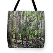Florida Riverbank  Tote Bag