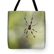 Florida Spider Tote Bag