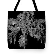 Florida Thatch Palm In Black And White Tote Bag