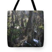 Florida Winter Tote Bag