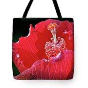 Flower 30f, Ny, 16 Tote Bag