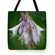 Flower 5 Tote Bag