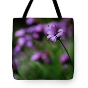 Flower And Fly Tote Bag