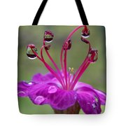 Flower And Raindrops Tote Bag