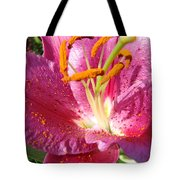 Flower Art Prints Pink Orange Lily Flower Giclee Baslee Troutman Tote Bag