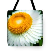 Flower Blossom 3 Tote Bag