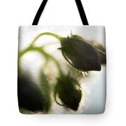 Flower Buds Abstract Tote Bag