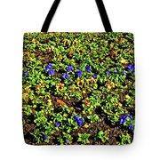 Flower Carpet. Sochi Arboretum. Tote Bag