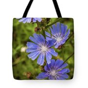 Flower Chicory Tote Bag