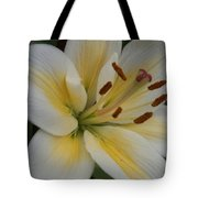 Flower Close Up 1 Tote Bag