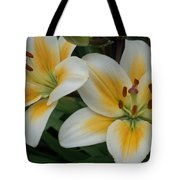 Flower Close Up 2 Tote Bag