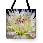 Flower Dahlia. Macro Tote Bag