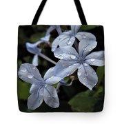 Flower Droplets Tote Bag