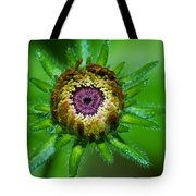 Flower Eye Tote Bag
