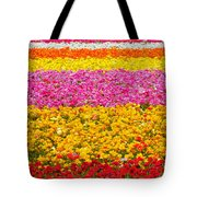 Flower Fields Carlsbad Ca Giant Ranunculus Tote Bag