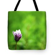 Flower Front Of Blur Background. Tote Bag