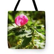 Flower Of Eglantine - 2 Tote Bag