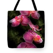 Flower - Orchid - Phalaenopsis - The Cluster Tote Bag