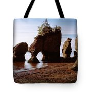 Flower Pot Rocks On The Beach, Hopewell Tote Bag
