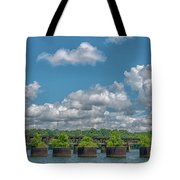 Flower Pots2 Tote Bag