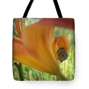 Flower Snail On An Orange Lily Tote Bag