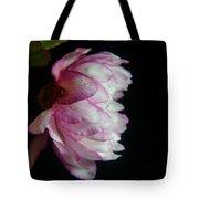Flowering Almond 2011-11a Tote Bag