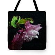 Flowering Almond 2011-15 Tote Bag