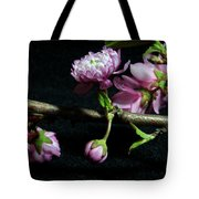 Flowering Almond 2011-16 Tote Bag