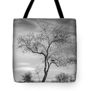Trees Are Talking To Us Tote Bag